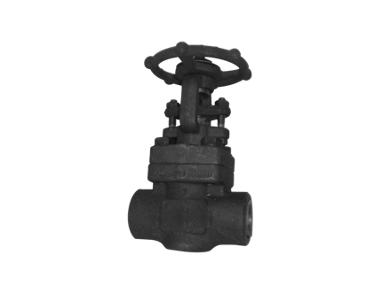 Valvotubi Ind. forged steel gate valve ANSI #800 art.1511